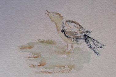 Oiseauete