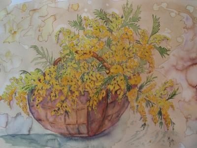 Panier de mimosas